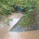 28/10/2013 @ 08:34 - Halam Road run off through one way valve to Starkey Pond