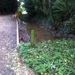 06/10/2013 Westhorpe Top Pond