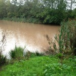 28/10/2013 @ 08:36 - Starkey Pond