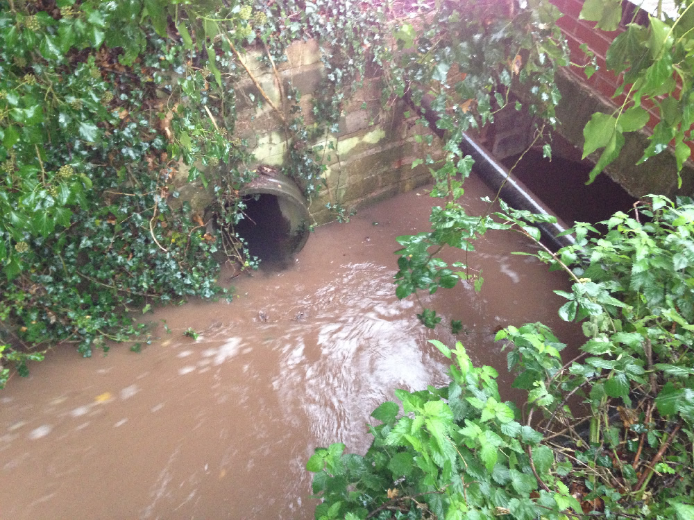 28/10/2013 @ 07:55 - Entrance to Hallaughton Road Culvert