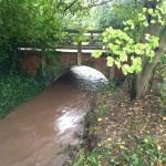 28/10/2013 @ 09:02 - Potwell Dyke, Bishops Palace Playing Field Bridge Coping Fine