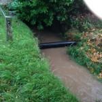 28/10/2013 @ 09:09 - Potwell Dyke flowing into culvert near Park Lodge, Nottingham Road
