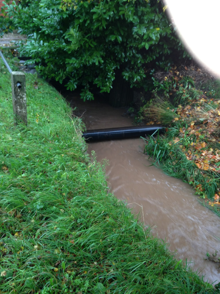 28/10/2013 @ 09:09 - Potwell Dyke flowing into culvert near Park Lodge, Nottingham Road