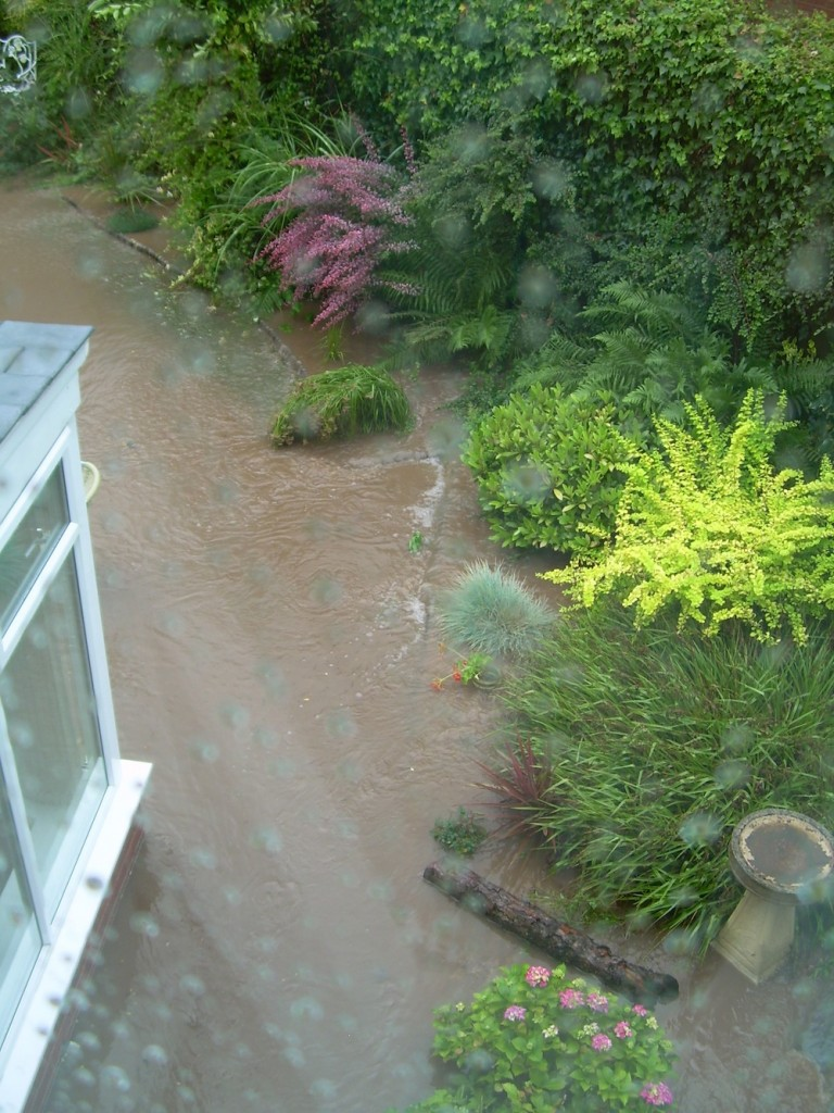 Garden backing onto Humberstone Rd.  Floodwater came through hedge  boundary - a raging torrent approx 20 inches deep along the recently constructed footpath