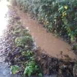 Full ditch between N01 Park Lane and public footpath4