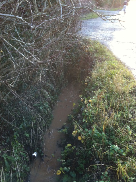 Ditch downstream of SRUFC entrance Park Lane