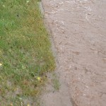 19/07/2014 Water overflow onto verge and pavement from Halam Road